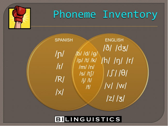 [Image: Phoneme Inventory.jpg]