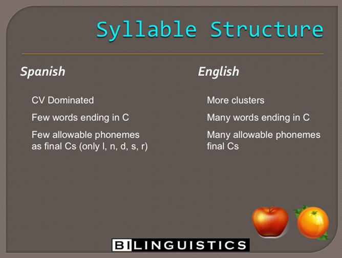 [Image: Syllable structure.jpg]