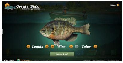 [Image: fish1.JPG]