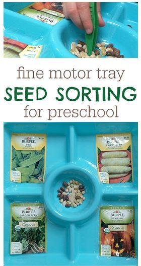 seedsortng
